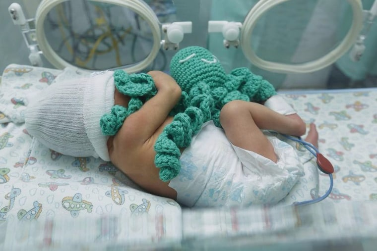 Preterm baby in an incubator holding a crochet octopus